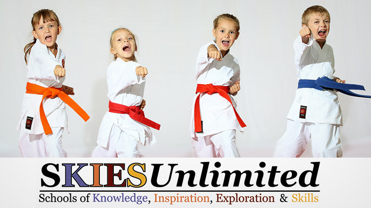 SKIESUnlimited: Karate
