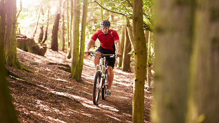 Evening Mountain Bike Rides